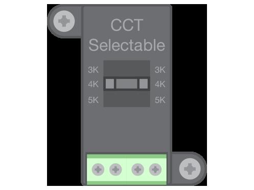 SWP-CCTS